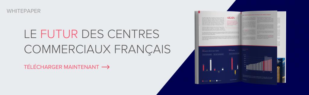 Le Futur des centres commerciaux Français - Télécharger Maintenant